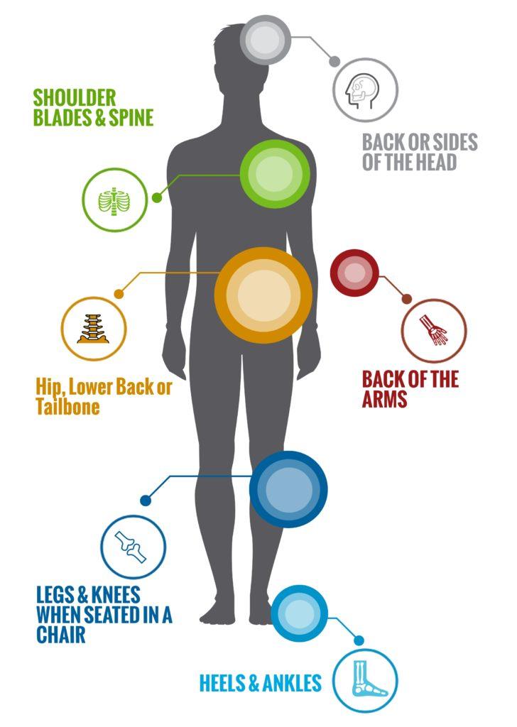 Walgreen-Health-Solutions-Body-Infographics